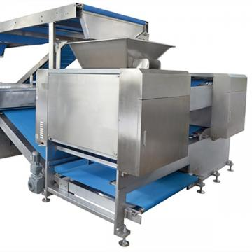 Automatic Plastic Biscuit Tray Thermoforming Machine