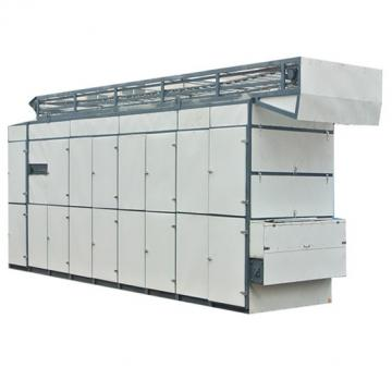 Hot Sale Automatic Onion Mesh Belt Dryer