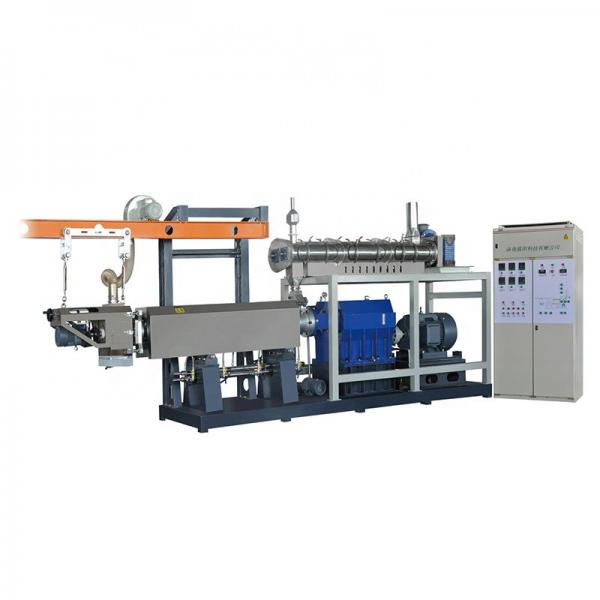 Industrial Automatic Fish Pet Dry Dog Food Freeze Drying Dehydrator Processing Making Machine Production Line Price