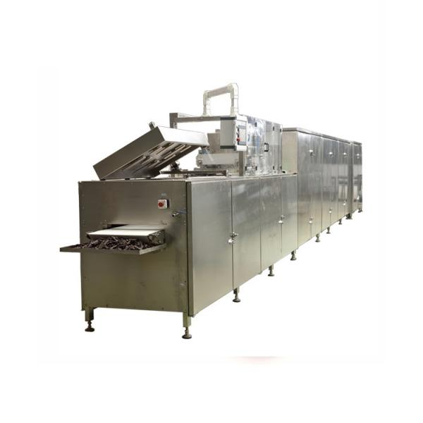 Factory Fruit and Vegetable Processing Machines/Quick Frozen Line/Food Processing Production Line for Daylily Production Line with High Output
