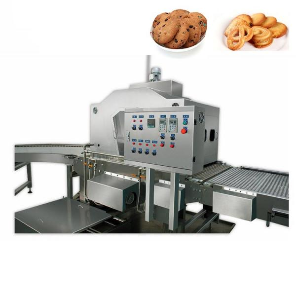 Cookies Depositing Production Line (QK600)